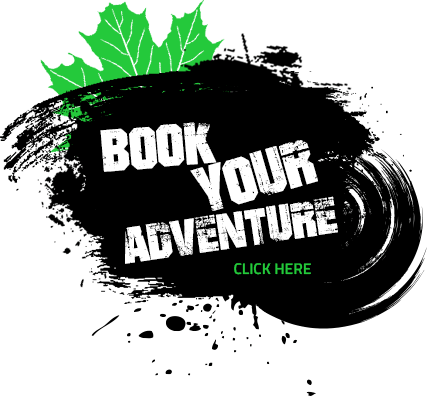 book your adventure summer button